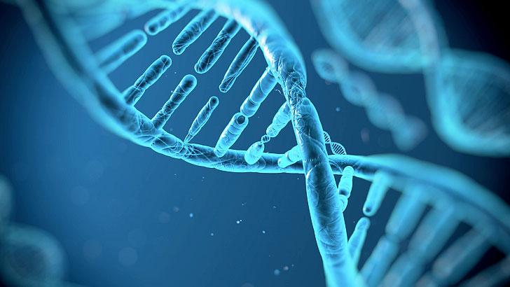 Biyoteknoloji, DNA, Gen